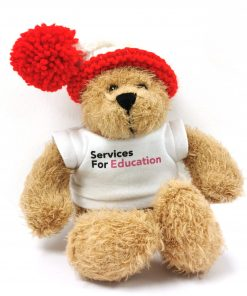 SFE CHRISTMAS BEAR 8